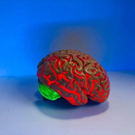 médicament traitement déclin cognitif