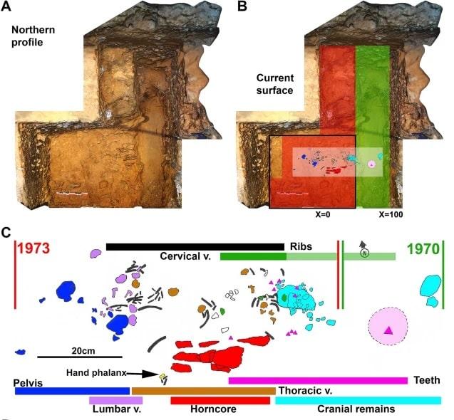 modelisation surface fouilles reconstitution ossements