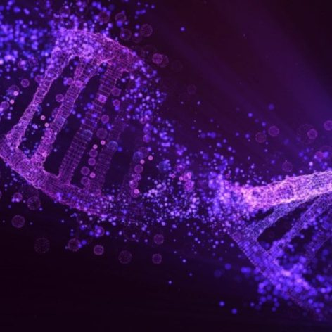 origine vie mélange ADN ARN
