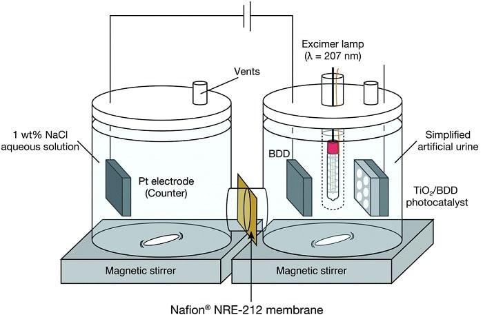 schema protocole experimental systeme urine engrais
