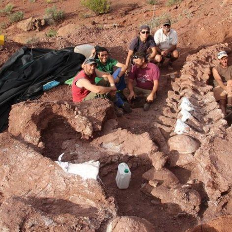 os fossilises plus grand dinosaure jamais decouvert