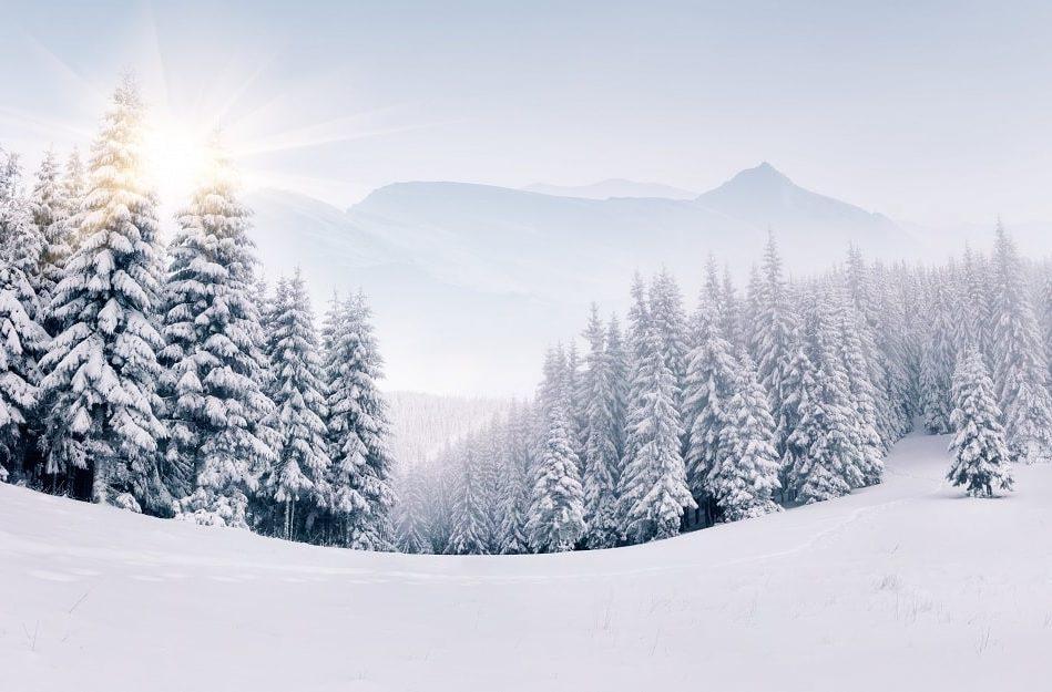 pourquoi neige est blanche