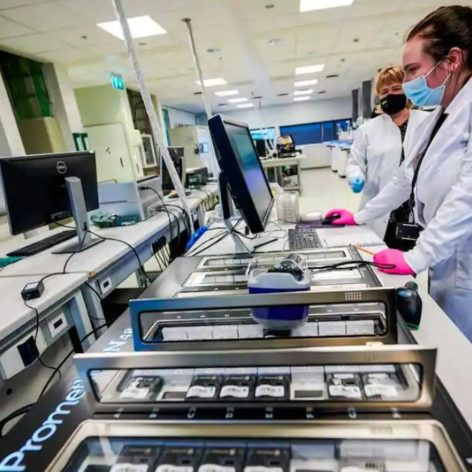 séquençage virus covid-19 Islande