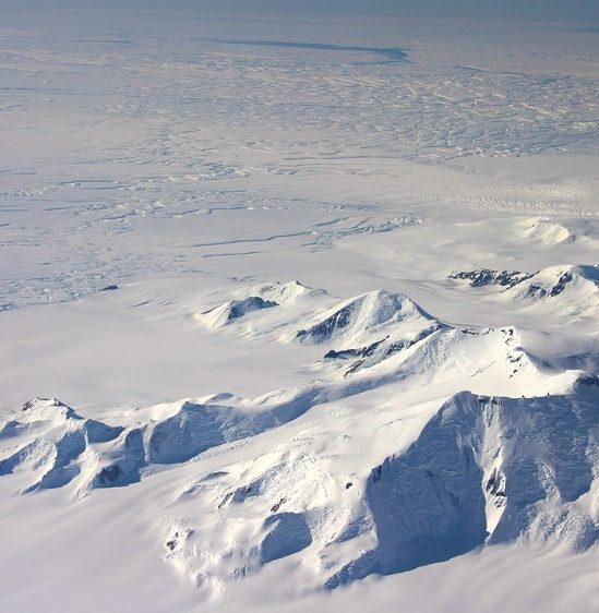 decouverte inattendue organismes sous banquise antarctique