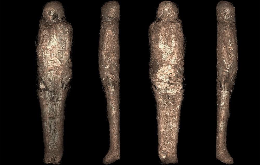 Découverte d'une momie égyptienne enveloppée dans une étrange structure - Trust My Science
