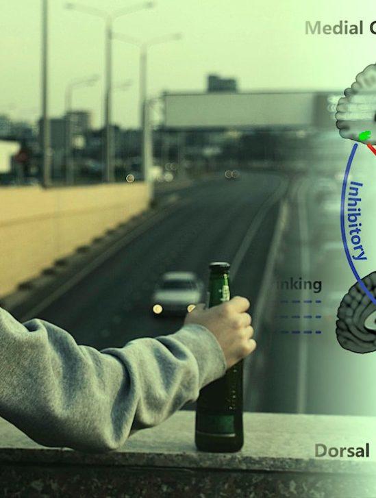 identification potentielle origine neuronale alcoolisme