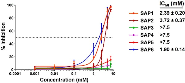 inhibition infection sars-cov-2 peptide sap