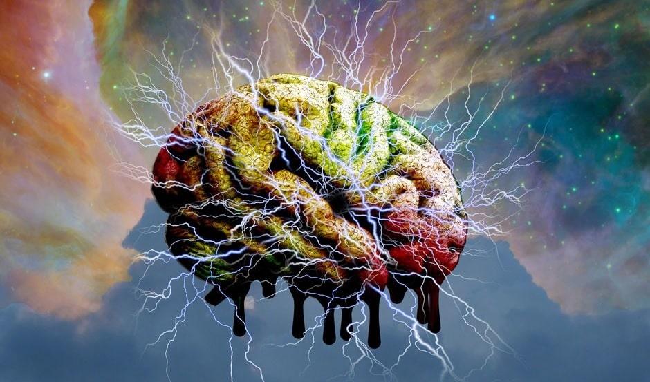 lsd libere cerveau contraintes anatomiques couv