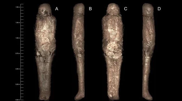 momie scan enveloppe boue