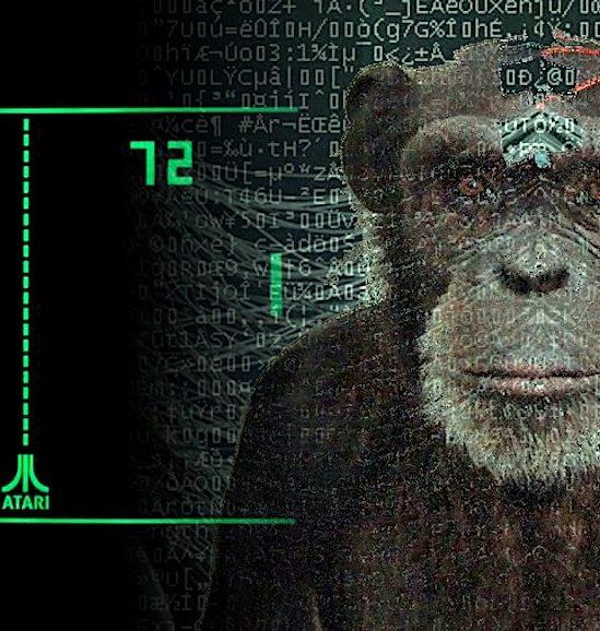 neuralink singe joue jeux video avec pensee