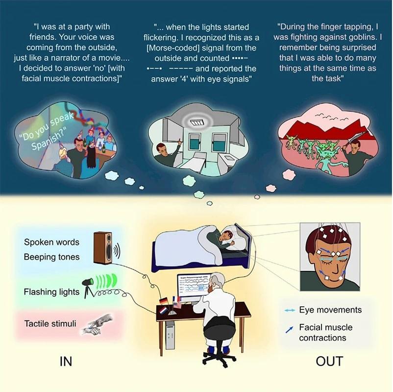 schema-protocole-experimental-sommeil-communication