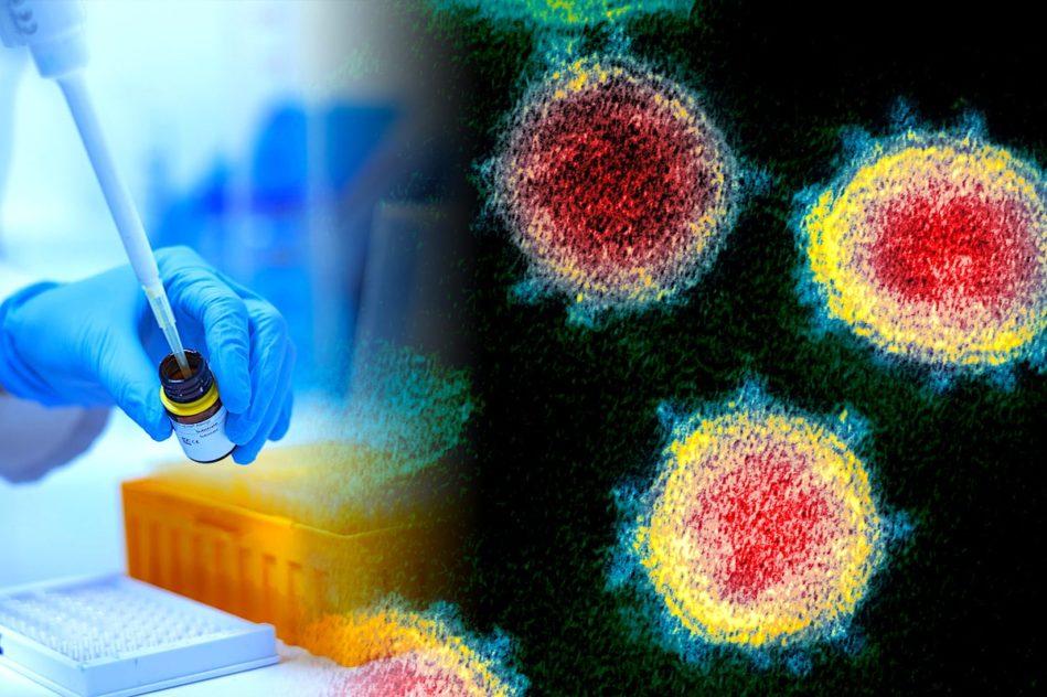 vaccin universel coronavirus essais cliniques prevus cette annee
