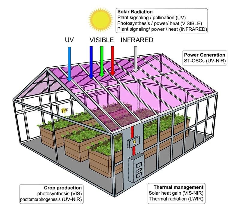 cellules solaires longueurs onde serre