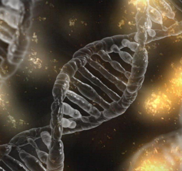 gène cancer sein