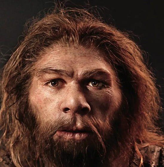 neandertal pouvait produire langage oral complexe similaire humains