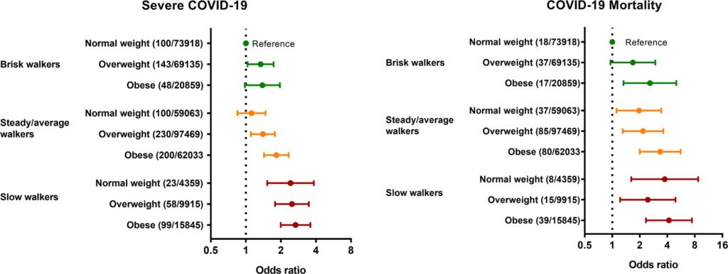 relation obesite vitesse marche risques covid-19