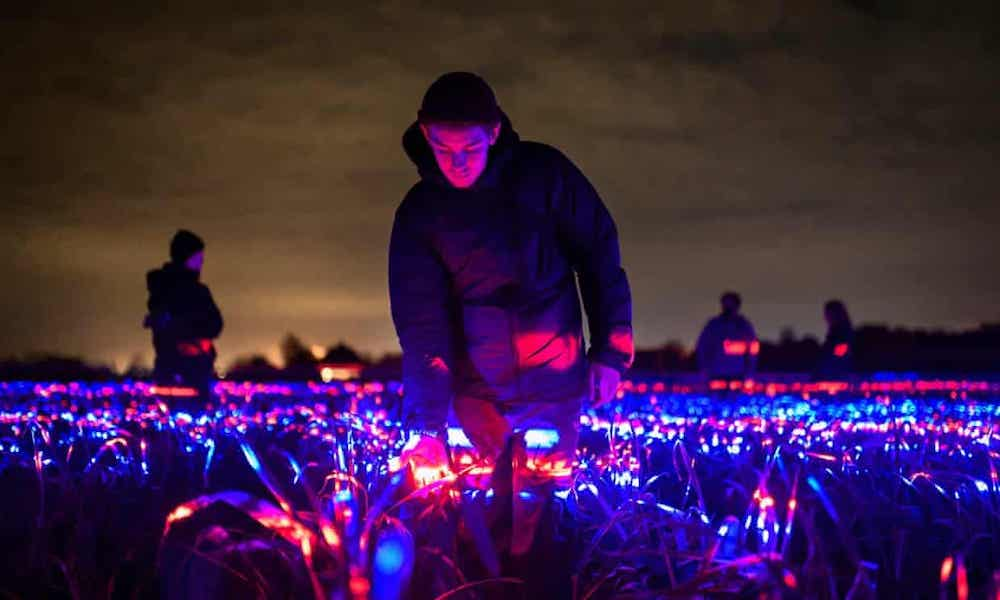 roosegaarde grow eclairage cultures lumiere stimulation