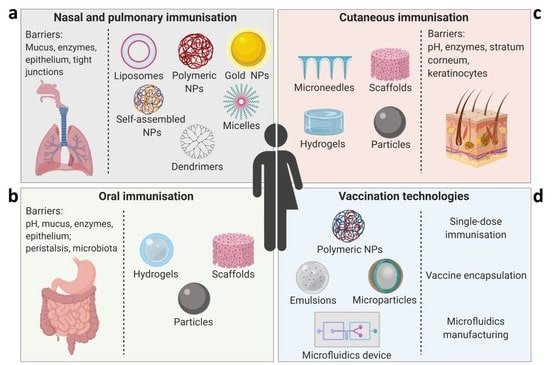 schema differents types vaccins