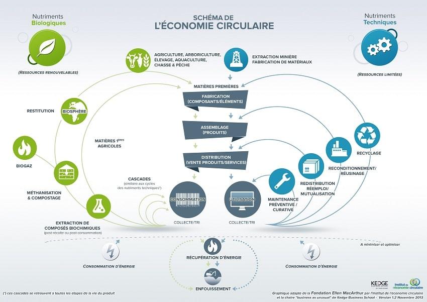 schema explication ecologie circulaire