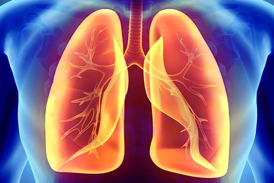 vaccination par inhalation efficaces contre virus et cancer poumons