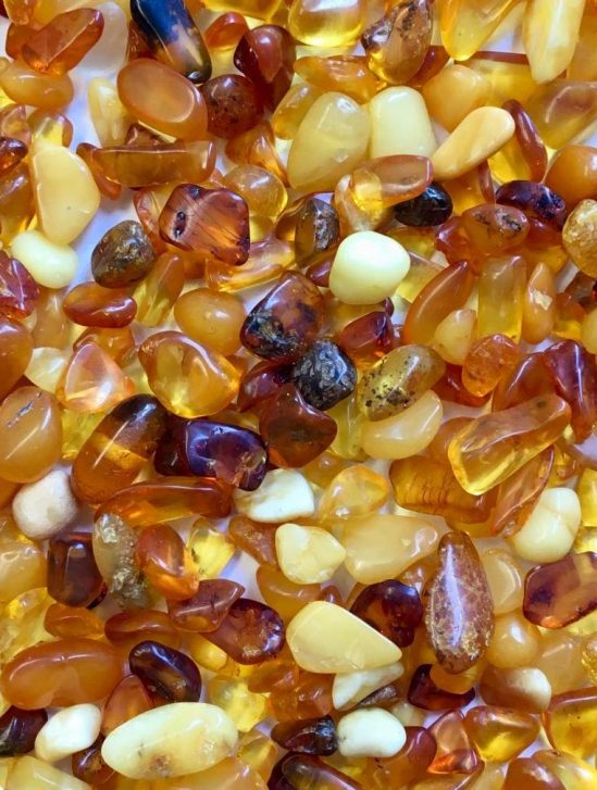 ambre baltique pour lutter contre infections pharmacoresistantes