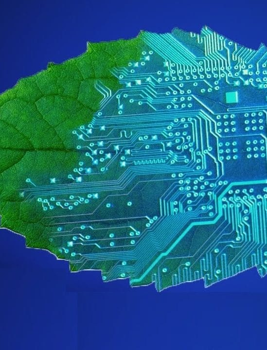 appareil photosynthese ameliore efficacite progressivement