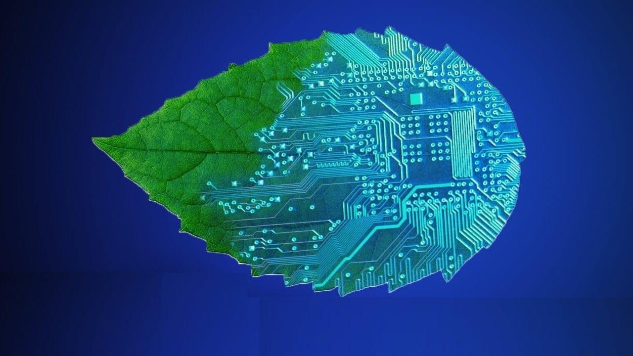 Un appareil de photosynthèse artificielle qui améliore son efficacité au fil du temps