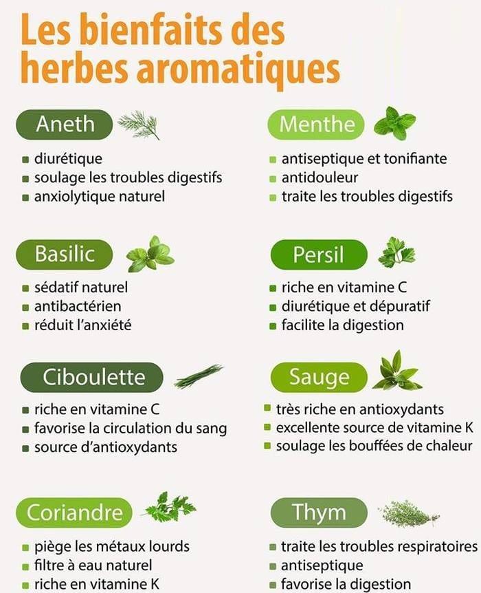 bienfaits herbes aromatiques sante