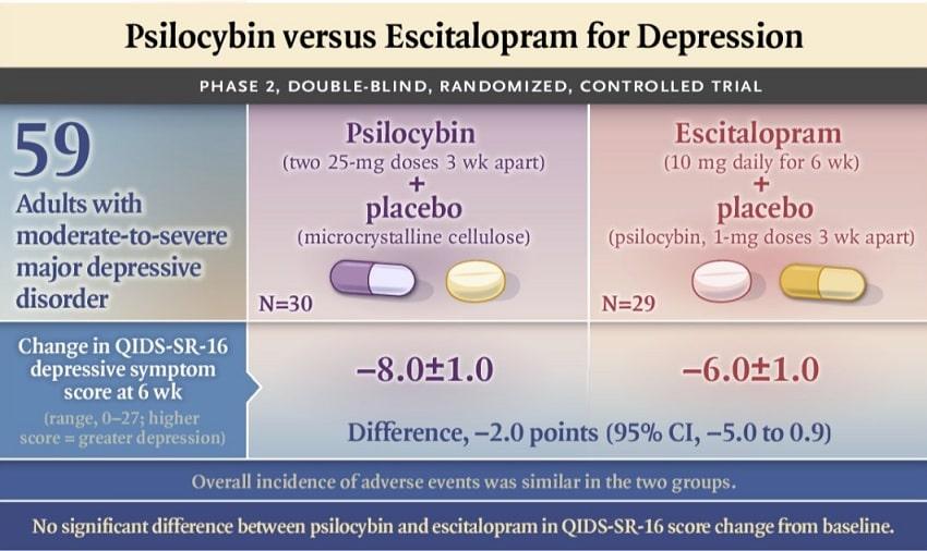infographie details resultats essai clinique psilocybine depression