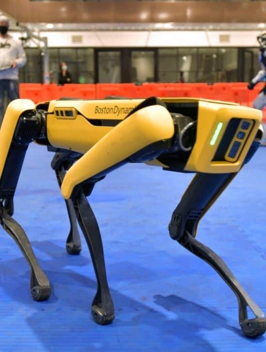 retrait chien robot police New York
