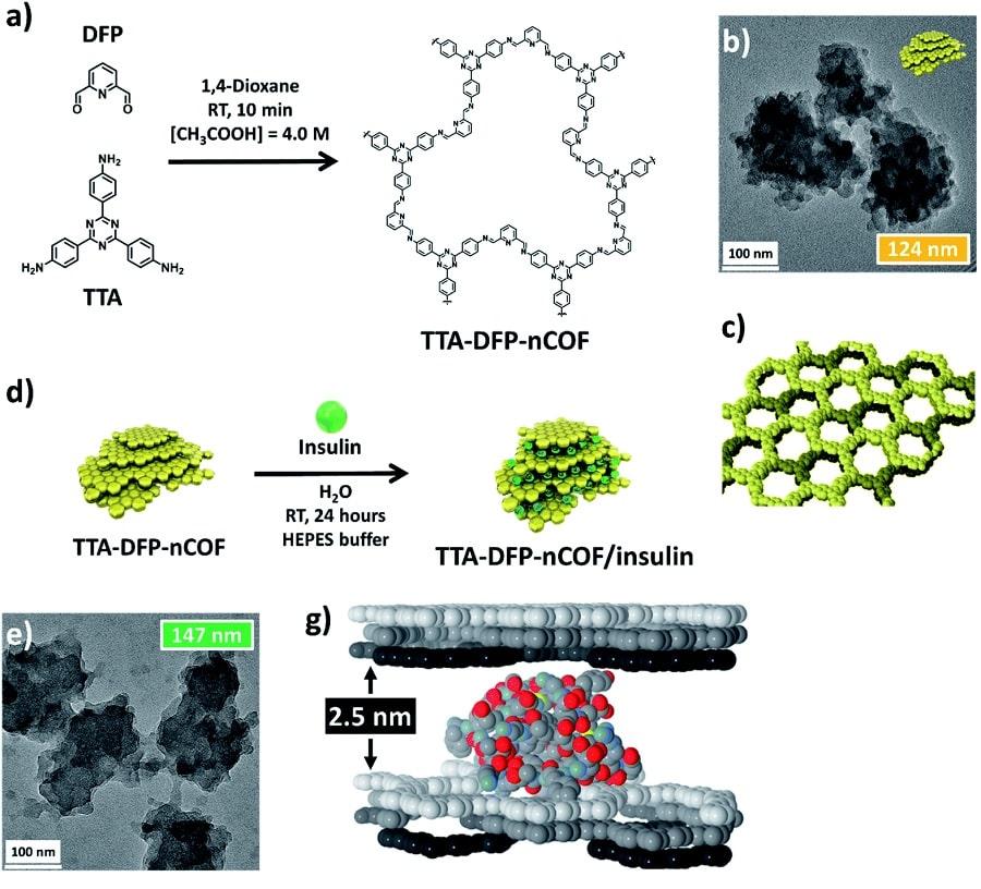 structure nanomateriaux microscope insuline