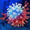 variantes coronavirus jusqu quel point peuvent elles devenir dangereuses
