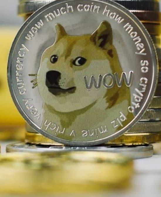cadre goldman sachs demissionne gagne millions dogecoin