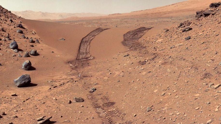 contamination mars microbes NASA