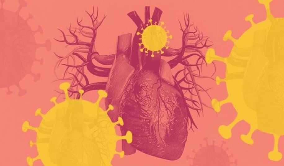 covid jeunes adultes maladie endommage durabelment systeme cardiovasculaire