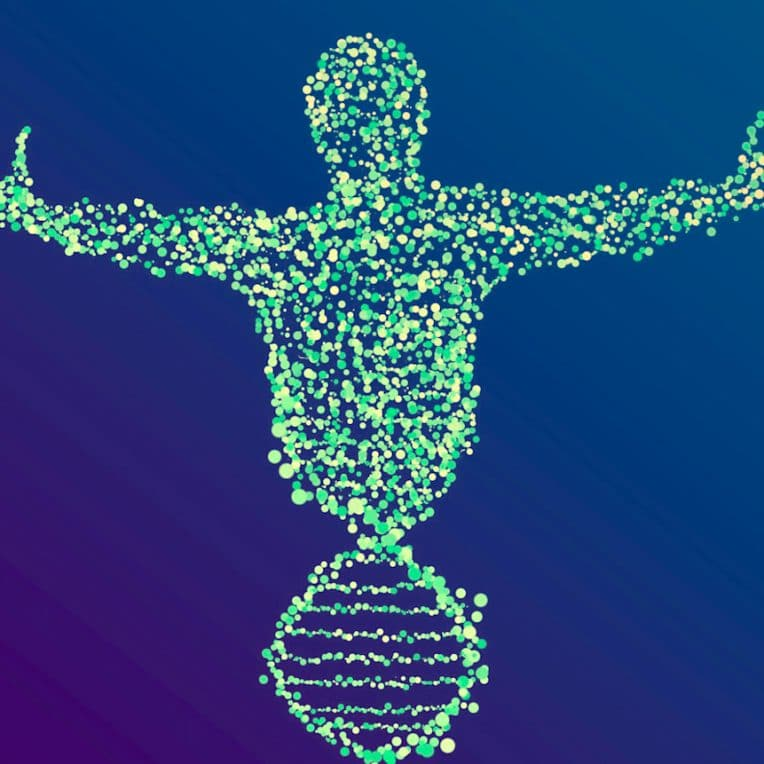 genome humain entierement sequence couv