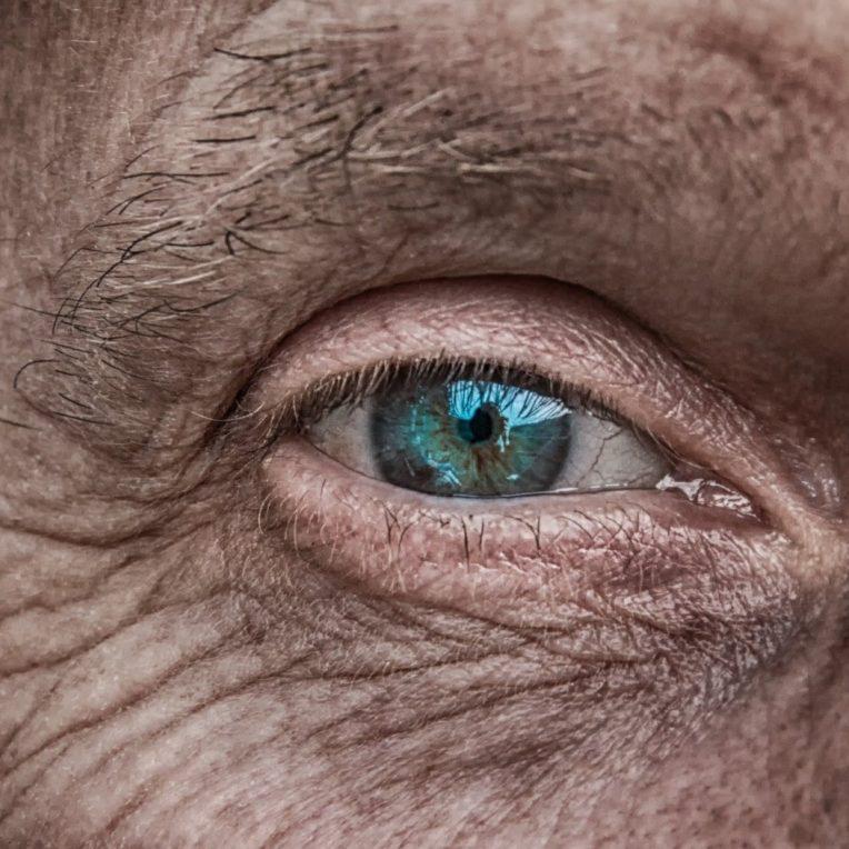 longévité durée vie humaine
