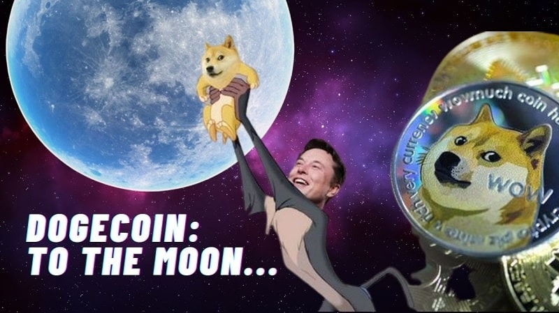 meme elon musk dogecoin lune