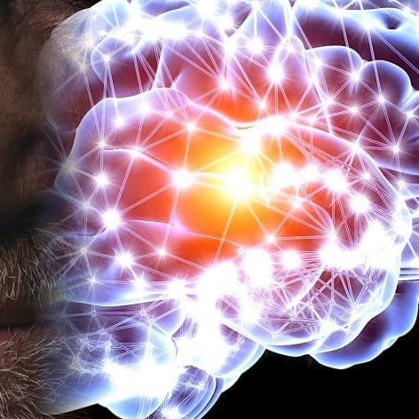 premiers signes maladie parkinson detectes dans nez