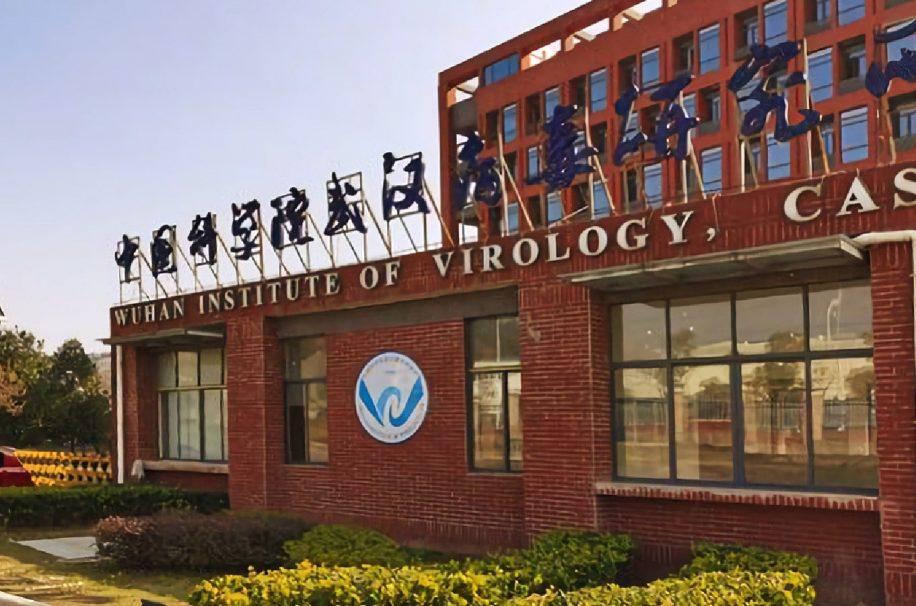 rapport enquête origine COVID-19 Wuhan