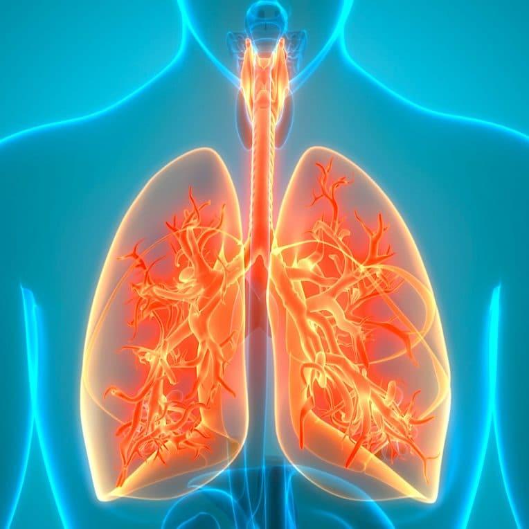 vaccin contre asthme efficace chez animaux