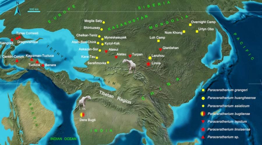 carte dispersion rhinocéros géants