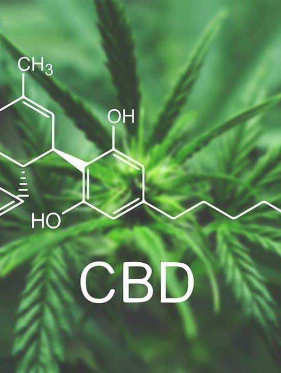 cbd pourquoi interesser cannabinoide
