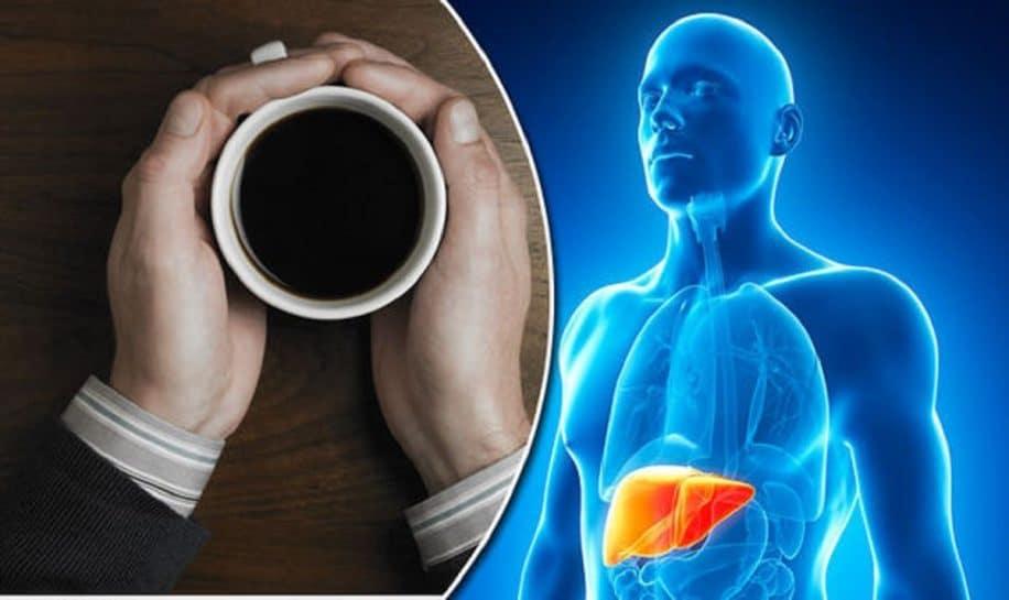 consommation cafe reduit risques maladies hapatiques chroniques couv