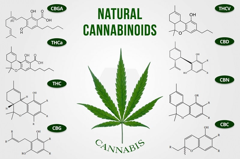 formules chimiques cannabinoides
