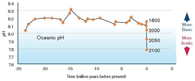 graphique evolution ph ocean
