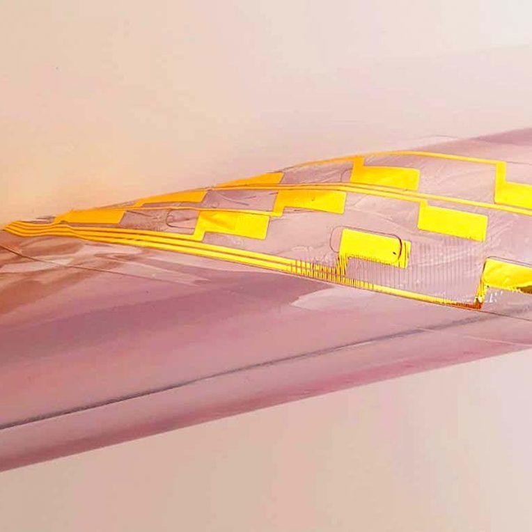 implant gonflable injecte dans colonne vertebrale pourrait soulager douleur chronique