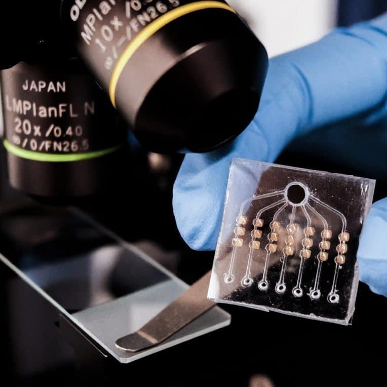 nouveau test sanguin evalue efficacite traitement anticancereux 24h