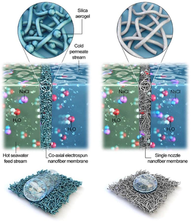 membrane coaxiale électrofilée