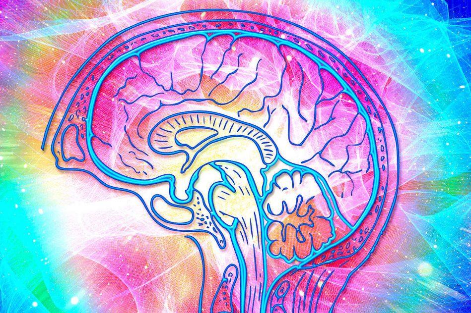 therapie psilocybine serait au moins aussi efficace que antidepresseurs conventionnels